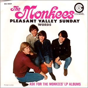 Pleasant Valley Sunday/ Words